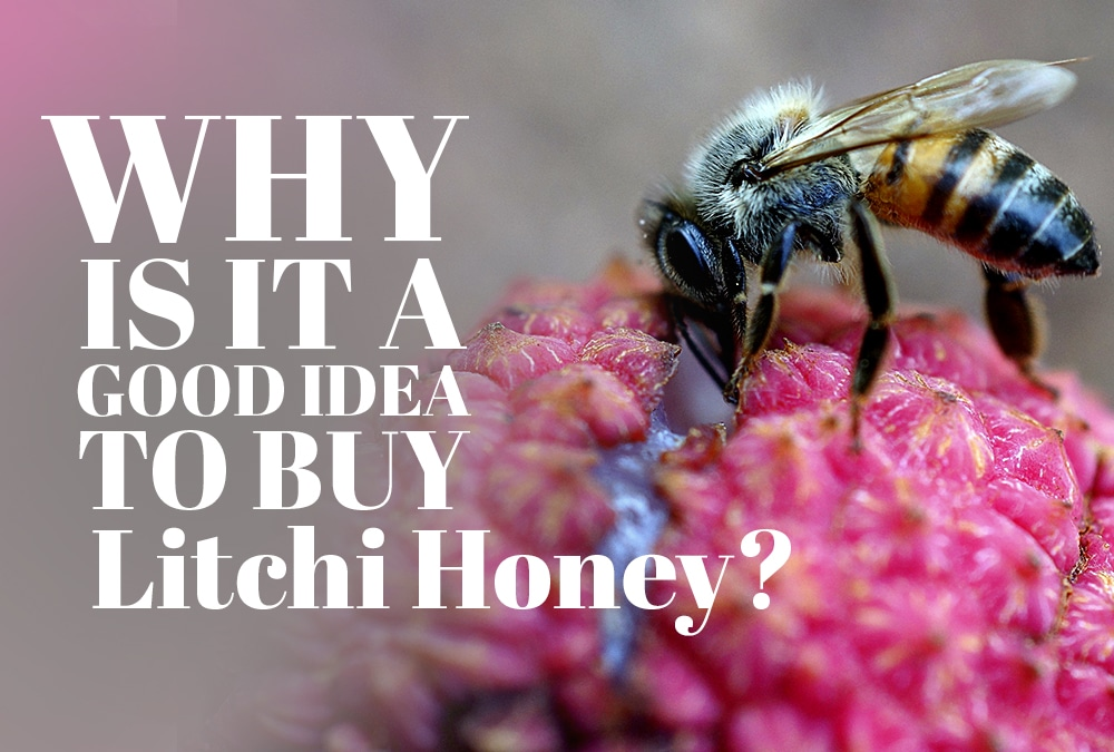 Why Is It A Good Idea To Buy Litchi Honey?